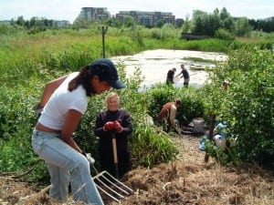 A group of local volunteers working on Land Trust site Greenwich Ecology Park