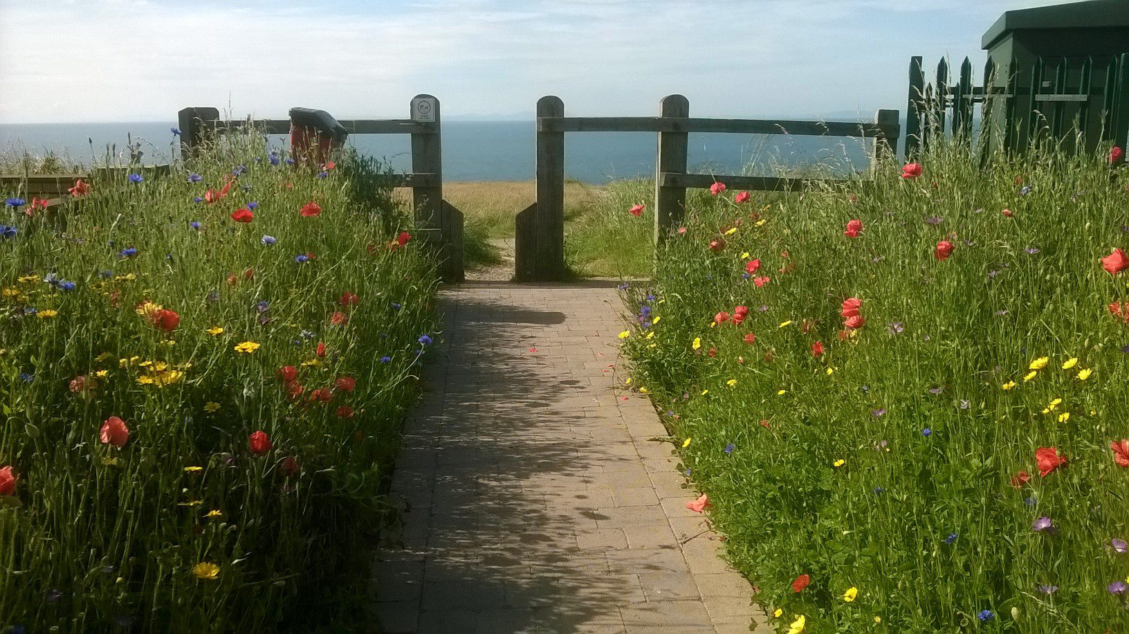 Volunteers pitch in to transform gateway to the Colourful Coast