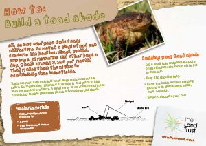 How to build a Toad Abode