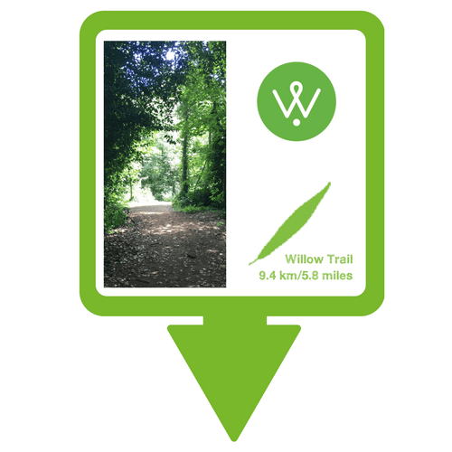 Wellesley Willow Trail