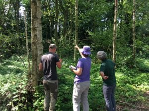 Spotting wildlife in the trees on the Wildlife ID course at Hassall Green